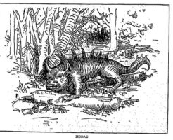 Fearsome Critters, Written by Henry H. Tryon • Illustrated by Margaret R. Tryon(Cornwall, NY: Idlewild Press, 1939) [CC0]
