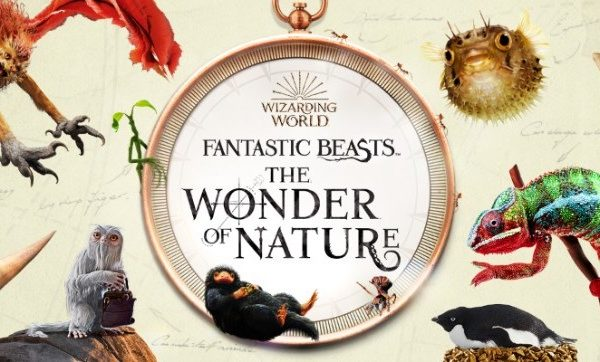 https://www.wizardingworld.com/news/fantastic-beasts-exhibition-natural-history-museum