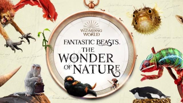 https://www.wizardingworld.com/news/fantastic-beasts-exhibition-natural-history-museum